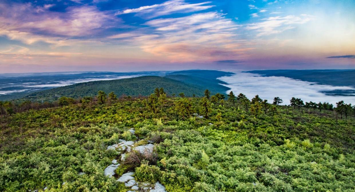 View of the Shawangunk Ridge from the Long Path. Photo by Steve Aaron.